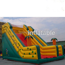 Professional manufacturer giant inflatable water slide,inflatable water slides wholesale,inflatable shark slide