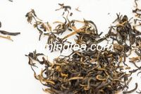 black tea theaflavins