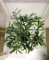 Real like artificial olive leaves for home decoration