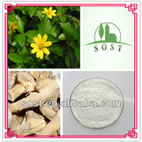 Plant Extract Powder Import China Products