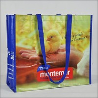 Hot selling pictures print recycle laminated pp woven bag(NW-725)