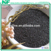 High Quality Anode Grade Graphite Petroleum Coke Type Calcined Pet Coke Price