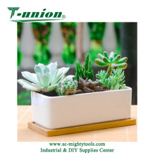 6.5 Inch Ceramic White Rectangle Succulent Plant Pot Cactus Plant Pot With Bamboo Tray