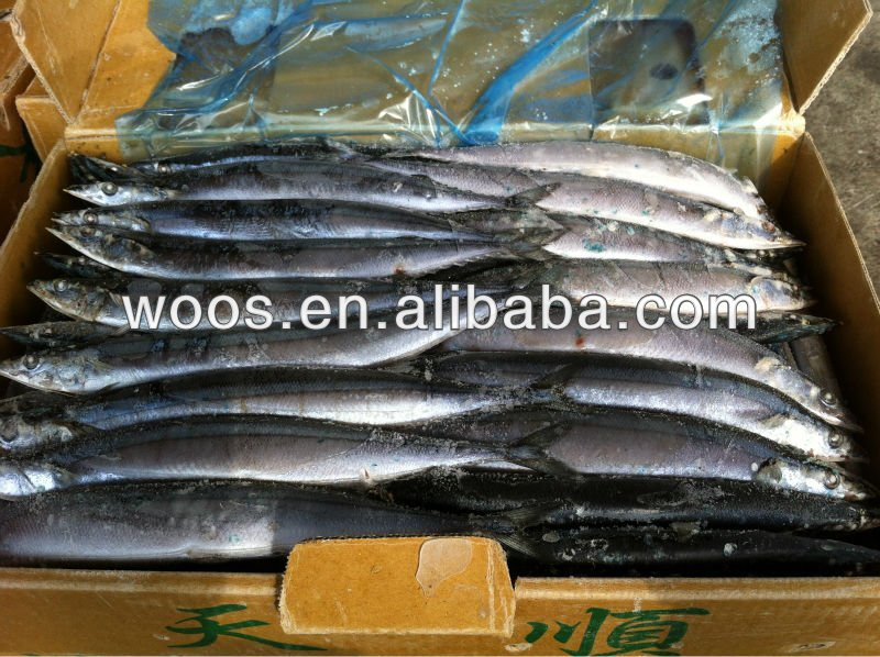 frozen pacific saury export packing fresh fish