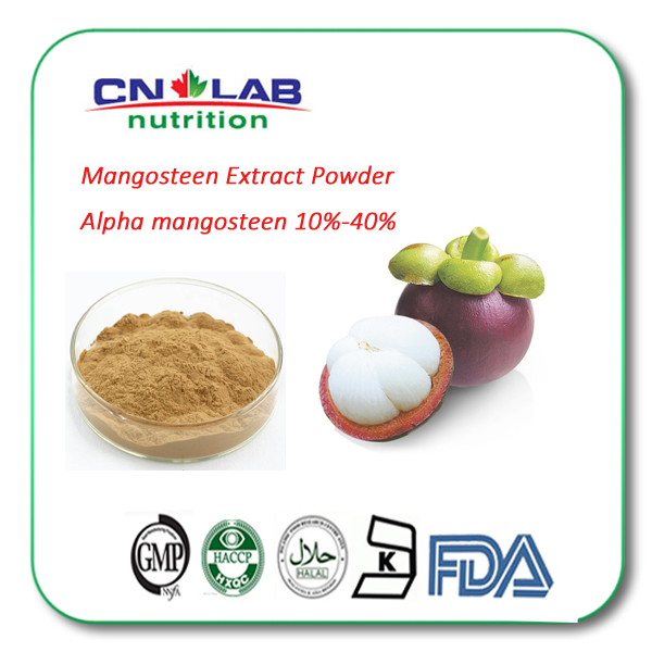 100% Natural Mangosteen Extract Powder Benefits With 10% 20% 30% Alpha Mangostin