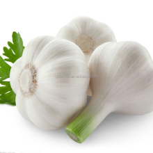 2017 BEST PRICE HIGH QUALITY CHINESE SOLO GARLIC