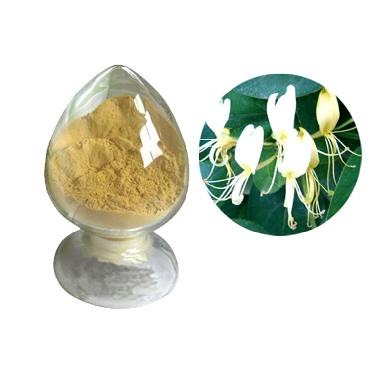 China Made water soluble honeysuckle extract 100% organic honey suckle powder