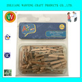 25MM mini craft clothes pegs