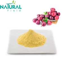 Natural Passion Fruit powder for Beverage