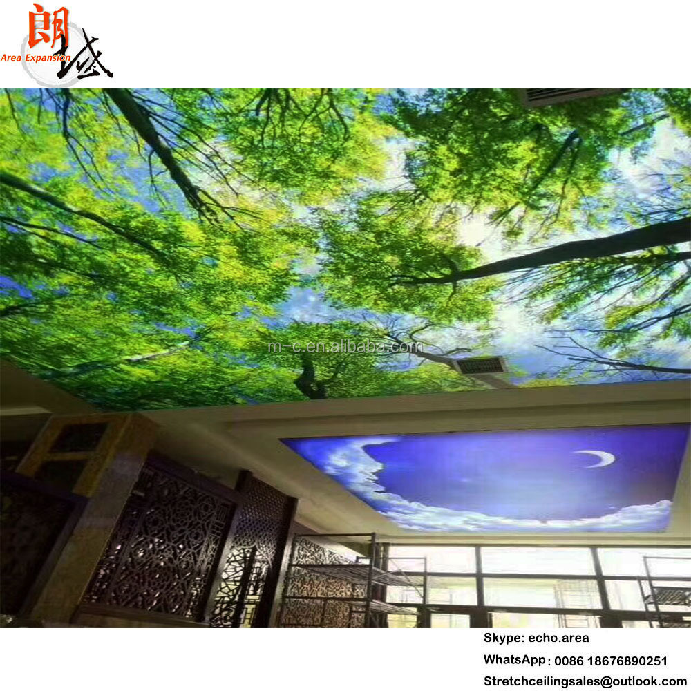 Guangzhou decorative materials fall ceiling design picture blue sky ceiling tile for living room