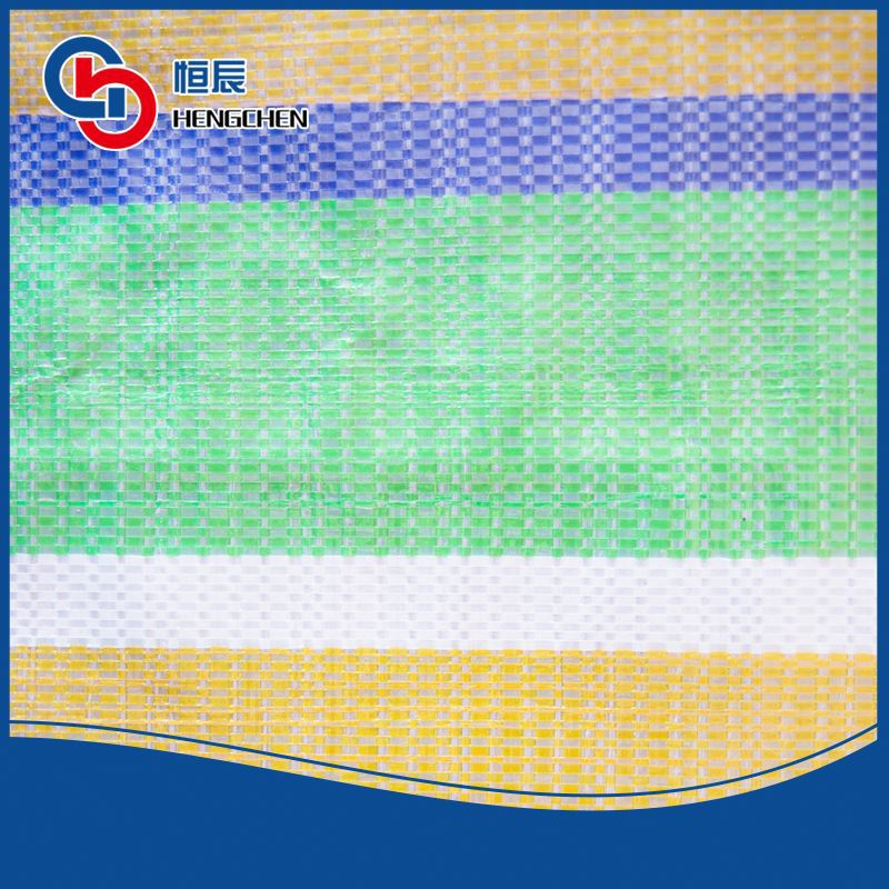 Great value ground sheet or cover pe stripped tarpaulin in standard size