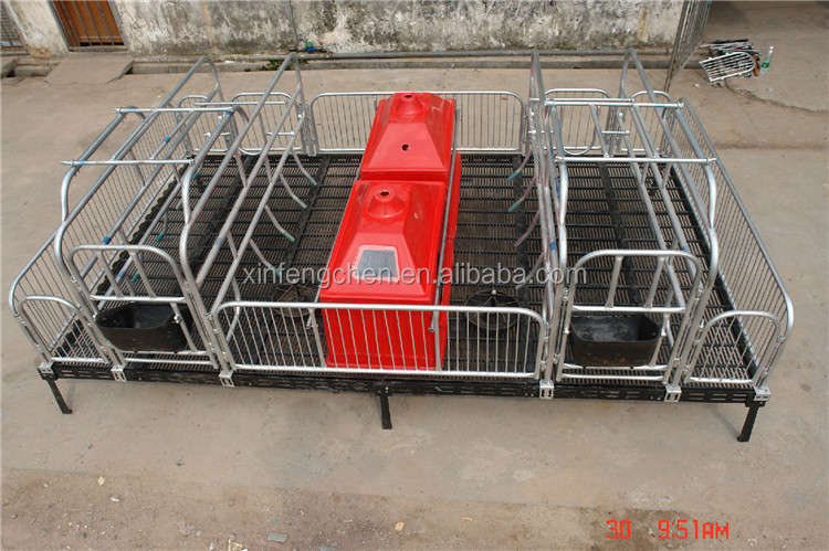 Farrowing crate for piglet