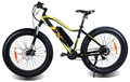 Cool Electric Bike with8 inch solid tyre,36V,8.8Ah,Electric Mountain Bike Bicycle