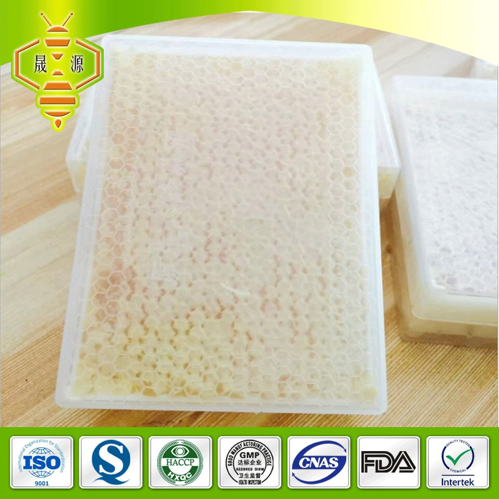 Wholesale Fresh 100 % natural Comb Honey