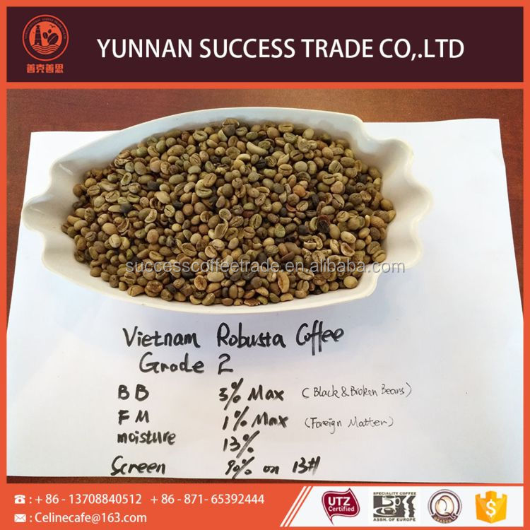 Newly excellent quality vietnam robusta beans coffee