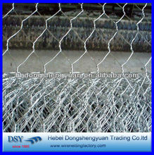 High quality triple twist galvanized hexagonal wire mesh manufacture in anping (have a stock)