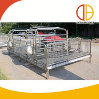 New product galvanized steel pipe sow farrowing crates