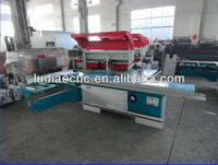 China high precision horizontal panel saw machine with CE
