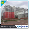 Good Quality Multi Span Fiberglass Greenhouse