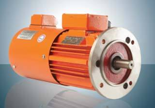 Three Phase Frequency Inverting Motor