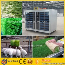 High Efficient Bean Seedling/Sunflower Shoots/Peanut sprout Machine