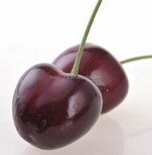 hot sale high quality fresh cherry price