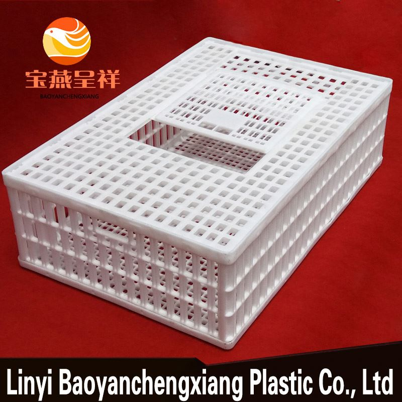live poultry meat chicken breeding cage to transport chicken crates for sale
