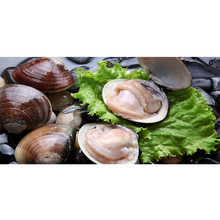 New Wholesale Cheap Seafood Price of Fresh Frozen Bulk Clam