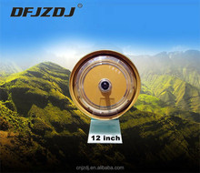 DM-260 12 inch 3kw brushless electric car dc motor for sale