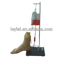 Lower extremity foot intravenous medical simulation training model