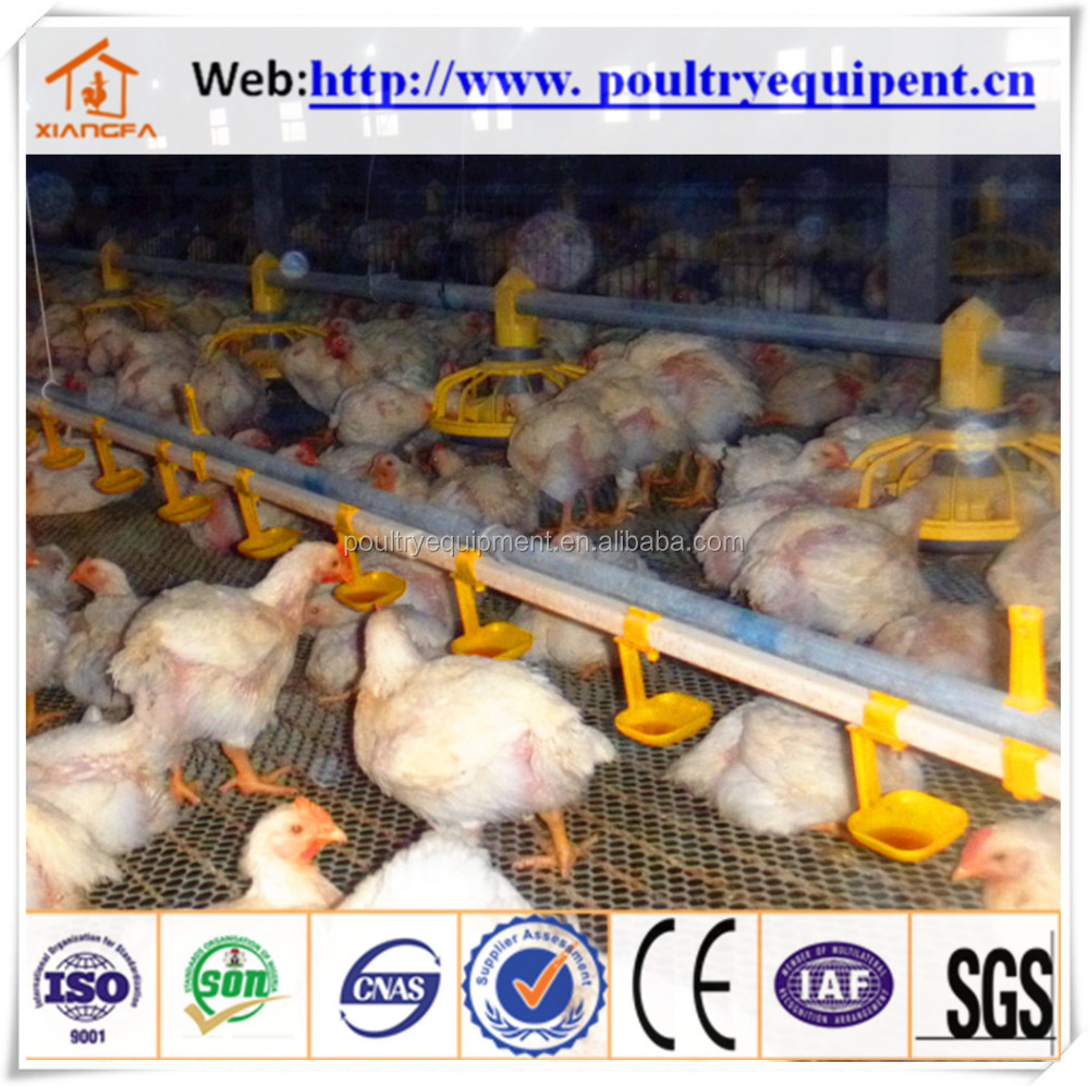2016 hot sell broiler chicken farm systems