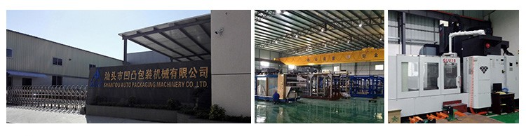 Automatic Disposable Container Production Line Forming Machines Plastic Box Making Machine
