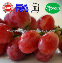 grape seed extract grape skin extract/high quality grape skin extract