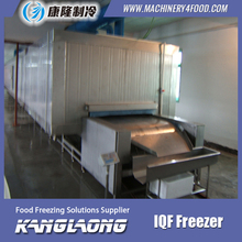 1000Kg/H Chicken Paws freezing equipment for frozen doner kebab
