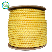 Cheap Price 6mm 8mm 10mm PP Polypropylene Rope 3 Strands Twisted Ropes
