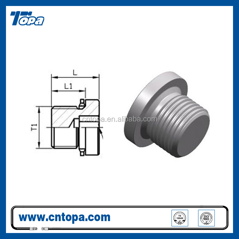 4BN stainless steel BSP double use Hollow Hex butt plug