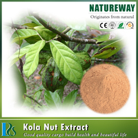 High purity Got kola herb Extract Powder, kola nut extract