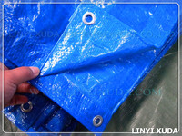 car cover blue waterproof and dampproof pe tarpaulin export to Austria