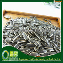 Large Quantity Best Quality Round/Long Type Ton Price Sunflower Seeds