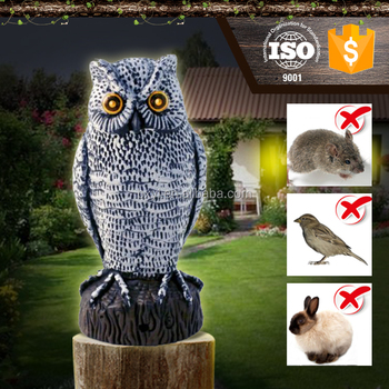 Pest Control Hooting Sound White Outdoor Motion Sensor Owl Buy