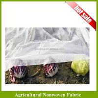 Pp Spunbonded Shrub Cover/Plant Protection Draw String Bag/Winter Jacket For Plant