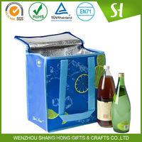 2 Bottle PP nonwoven Insulated wine cooler bag/bottle cooler bag