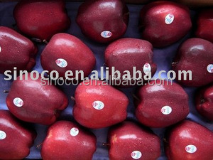 red huaniu apple (delicious apple )