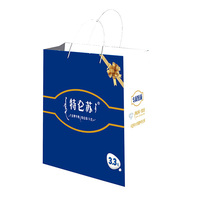 China manufacturer promotion shopper bag paper