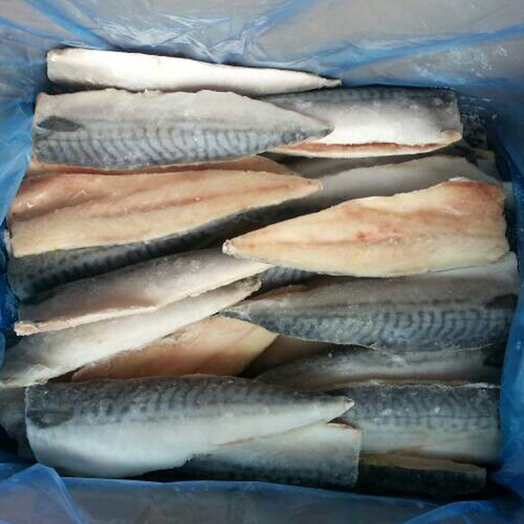 Fish Product Type and Bulk Packaging fresh frozen mackerel fillets pangasius