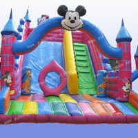 Wow Amusement Inflatable Slide China Inflatable