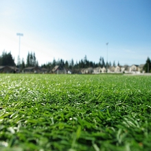 Non-Slip Quality Artificial Indoor Football Field Lawn for Sale
