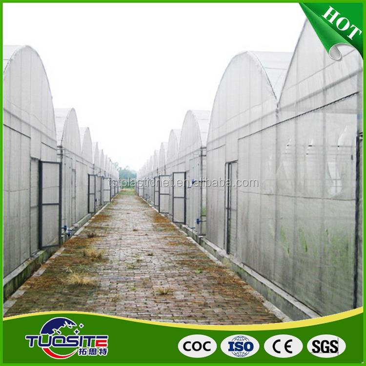 Natural style direct sale plastic poly film for greenhouse