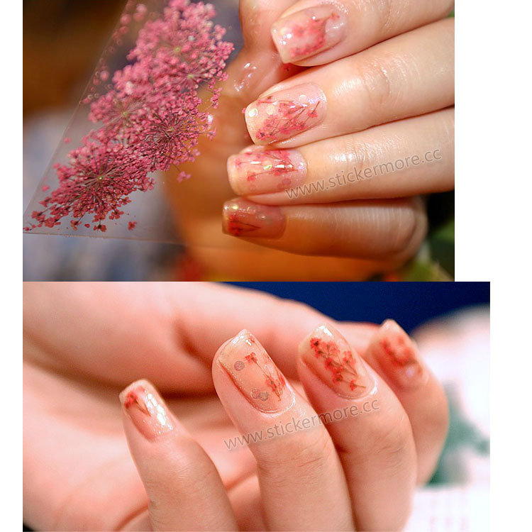 Hot! Nail Art Dry Flower Decoration DIY Flower Dry for Nail Art