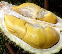 THAI DURIAN MONTHONG FOR KOREA